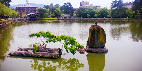 Just outside of Kōfuku-ji is this tranquil pond.